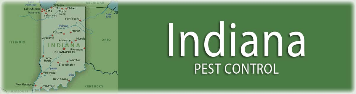 Indiana-pest-control-exterminator